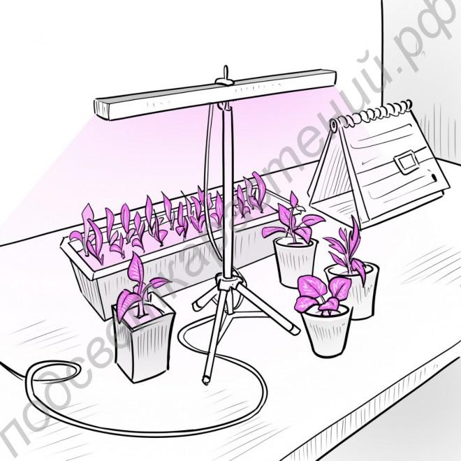 """Настольный LED светильник для растений """"Тубан"""" 72Вт"""